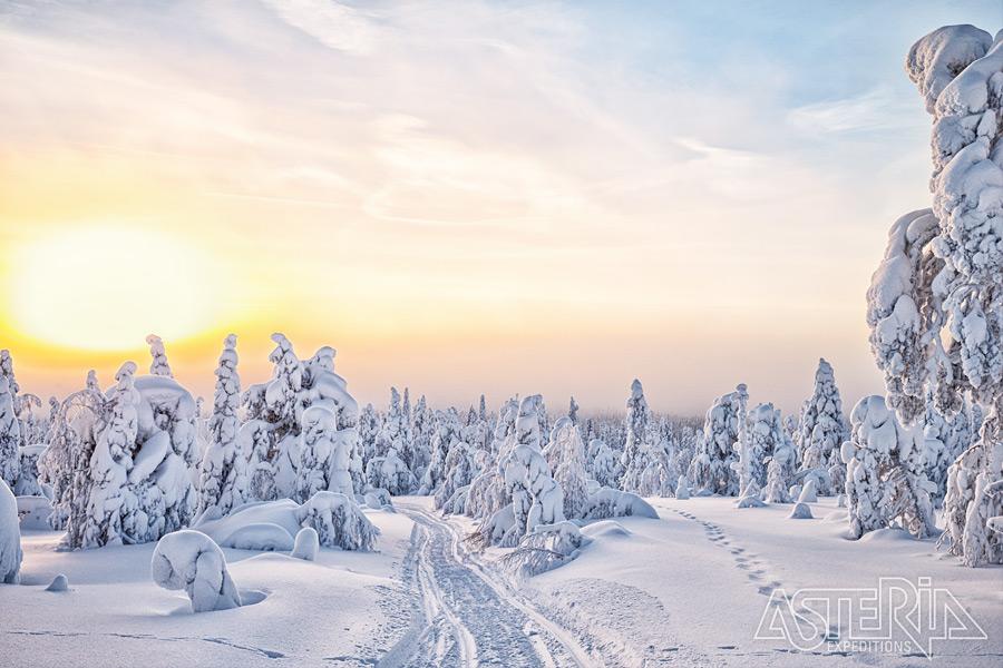 Winters Lapland 2021-2022 - Foto 1