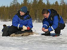 Probeer zelf een vis aan de haak te slaan tijdens de sessie ijsvissen