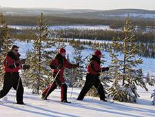 Maak een sneeuwschoenwandeling met gids en geniet van de spectaculaire landschappen rondom u
