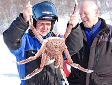 De reuzenkrabben kunnen tot 2m groot en 15kg zwaar worden