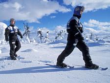 Of wat dacht u van een sneeuwschoenwandeling?